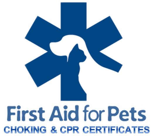 first aid for pets 2